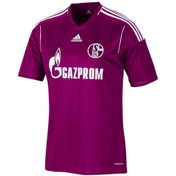 Schalke-trøje-tredje-2011-2013